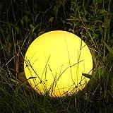 Albrillo RGB Luci Solari Esterno - LED Lampada Solare...