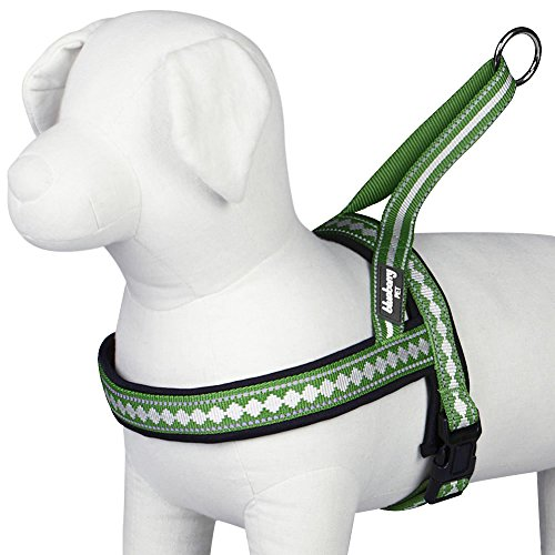 Blueberry Pet 7 Colors Soft & Comfy Jacquard Padded Dog Harness, Chest Girth 21.5 - 27.5, Moss Green, Medium, Reflective Adjustable Harnesses for Dogs