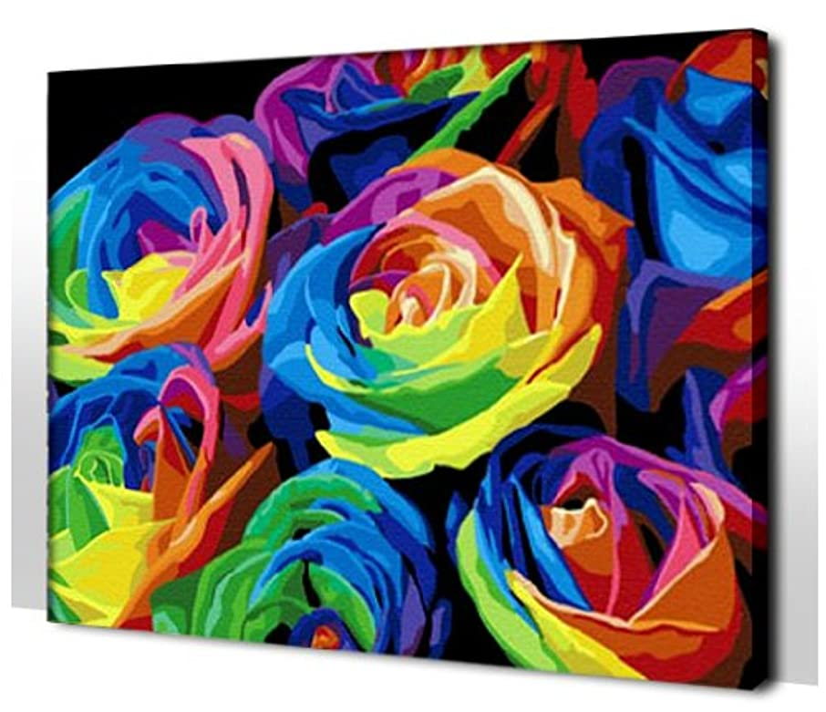 Diy oil painting, paint by number kit- Colorful 1620 inch.