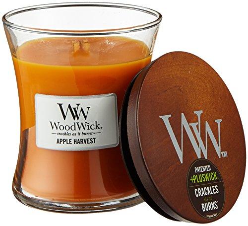 WoodWick Apfelernte Sanduhrformige Duftkerze, 275 g, Glas, Orange / Durchsichtig, 9.8 x 10.3 x 11.6 cm