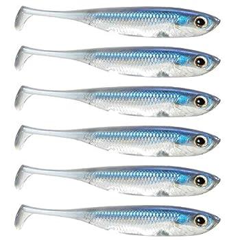 dr fish