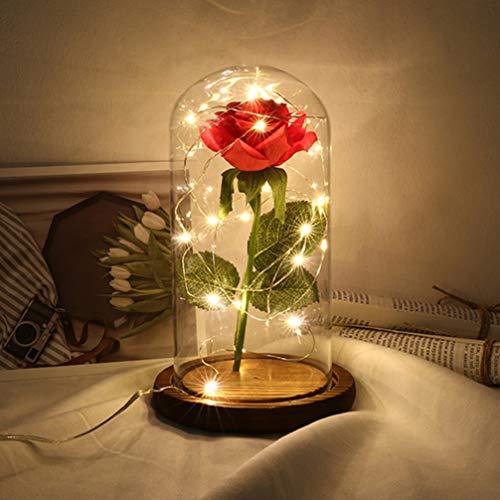 PIXNOR - flores de rosa de A Bela e a Fera, dura para sempre em redoma de vidro com luzes LED USB, multiuso para o Dia dos Namorados, Dia das Mães e Dia de Ação de Graças (marrom)