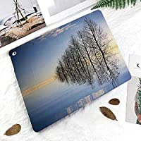 軽量版 iPad Pro 11 ケース 極薄軽量 2つ折りスタンド 磁気吸着式 オートスリープ機能 傷つけ防止 手帳型 2018秋発売のiPad Pro 11に対応 スマートカバー冬の凍った湖の上の木々自然の風光明媚なアートプリント