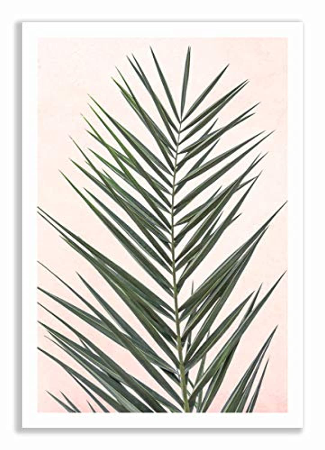 Palm on Pink Background with White Varnished Wood Frame and Mount, Multicolored, 50x70