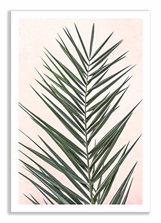 Palm on Pink Background with White Varnished Wood Frame and Mount, Multicolored, 40x60