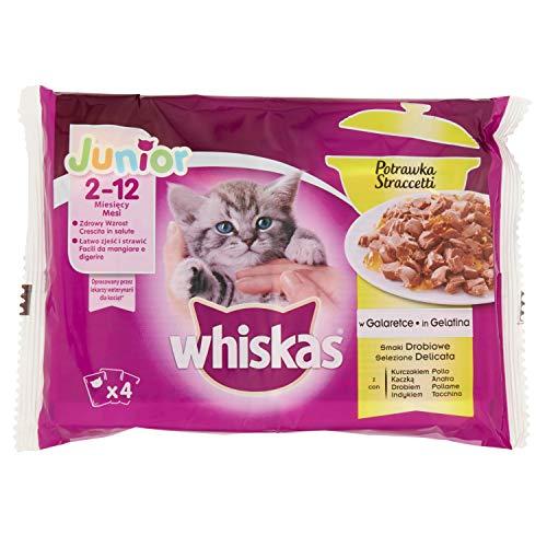 WHISKAS Alimento per gatti junior in gelatina casserole uccelli sacchetto 4 x 85 g