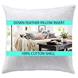 Yesterday Home 28x28 Euro Pillow Inserts-Down Feather Pillow Inserts-White