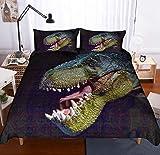 BUSAMEDO 3D Ancient Dinosaur Tyrannosaurus Brachiosaurus Fern Ichthyosauria Oviraptor Gift Print Bedding Sets 3 Pieces Duvet Quilt Cover Set for Kids Boys Girls Teens (B, Queen)