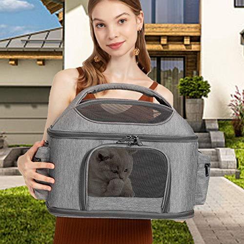 Ljourney Transportbox, Verstellbare Transportbox Robuster Rucksack Atmungsaktiver Transportbox Für Haustiere Reisetasche Für Kleine Oder Mittlere Tiere - Für Flug- / Autoreisen Suitable