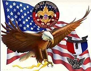 SDore Eagle Boys Scouts Edible Party Cake Image Topper Frosting Icing 1/4 Sheet