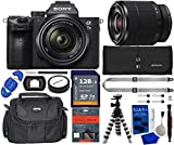 Sony a7 III Full-Frame Mirrorless Camera Bundle with 28-70mm Lens, 128GB SDXC...