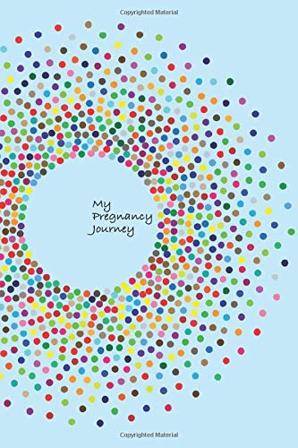 My Pregnancy Journey: 100-page journal to record your path to motherhood