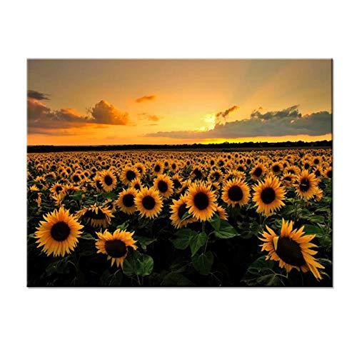 zhaoyangeng canvasafbeeldingen Hd gedrukte afbeeldingen 1 stuk mooie zonnebloemen in een veld poster wooncultuur woonkamer muurkunst - 50X75cm / niet ingelijst