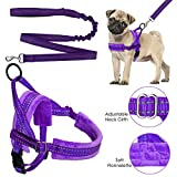xxs puppy harness - Lukovee Walking Dog Harness and Leash, Heavy Duty Adjustable Puppy Harness Soft Padded Reflective Vest Harness Anti-Twist 4FT Pet Lead Quick Fit Lightweight for Small Dog Cat (XX-Small, Purple)