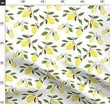 Zitrone, Blätter, Blüten, Obst, Frühling, Sommer, Gelb