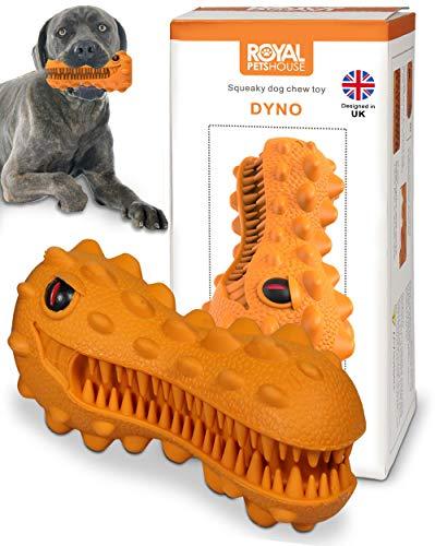 Royal Pets House Hund Quietschendes Kauspielzeug Dyno   Robuster haltbarer Gummi   Zahnbürstenspielzeug für Kauen   Hunde Zahnpflege und Zahnreinigung   Hilft Plaque zu entfernen