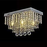 Lámpara de Techo de Cristal, Lámparas de Cristal LED rectangular con 5 Luces, Acero inoxidable Cristal Lámpara Flush Montaje en el Techo, para la sala dormitorio, L45cm W25cm H28cm