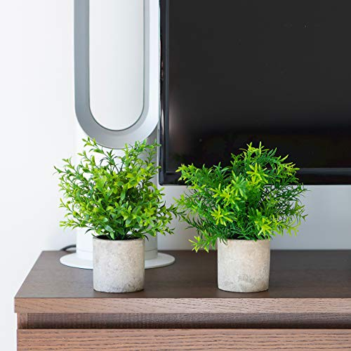 Small Artificial Plants in Pots For Home Decor Fake Faux Feaux Face Decorative Plant Decoration Arrangements Mini Artificial Potted Plants Greenery Decor Shelf Desk Office Green Rosemary /& Bamboo, 2