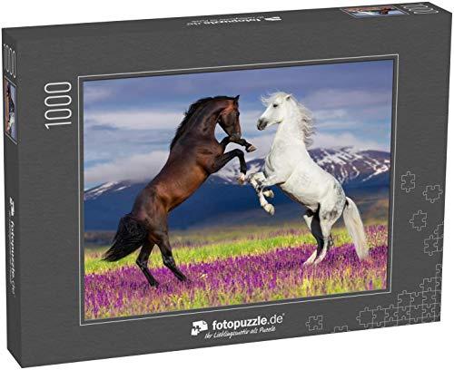 Puzzle 1000 Teile Zwei Pferde, die Sich gegen den Bergblick im Blumenfeld erheben - Klassische Puzzle, 1000/200/2000 Teile, in edler Motiv-Schachtel, Fotopuzzle-Kollektion 'Tiere'