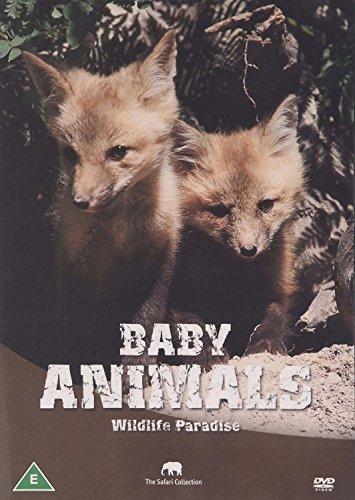 Wildlife Paradise - Baby Animals [Edizione: Regno Unito] [Edizione: Regno Unito]