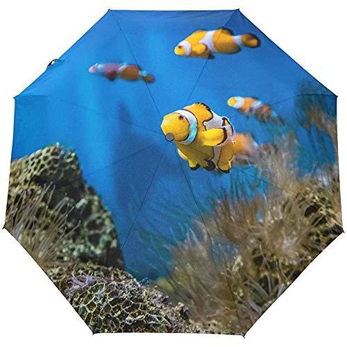 Jacque Dusk Regenschirm-Nemo Fishes Sea Aquarium Reiseschirm Auto Open Winddicht Wasserdicht Taschenschirm Compact Canopy