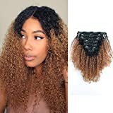 Sassina Virgin Human Hair Afro Curly Clip In Extensions Real Thick Ombre Color Natural Black Fading to Ginger 120 Grams 7 Pieces Per Bundle With 17 Clips AC TN30 18 Inch