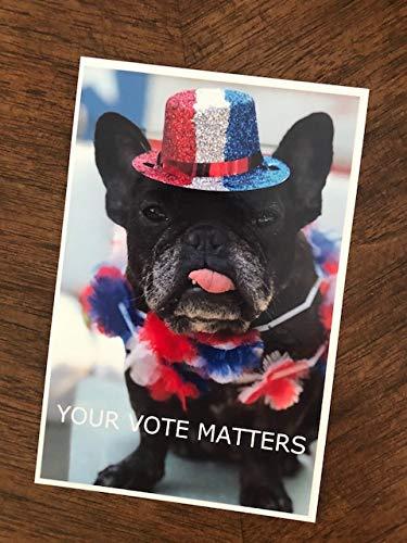 Set of Your Vote Matters Postcards (patriotic dog) (250 pack)