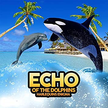 Echo Of The Dolphins