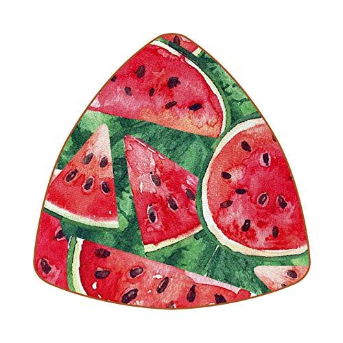 Summer Watermelons Painted Red Set of 6 Home Drink Coasters, Mug, Bottle, Cup, Coffee, Beer