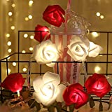 shirylzee LED Lichterkette Rosen Rose Lamp Simulation Rosenblütenkette 3M 20LED Lichterketten Blumen Batteriebetriebene Beleuchtung Deko für Garten Party Weihnachten Hochzeit Valentinstag - Rot