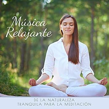 Música Relajante de la Naturaleza Tranquila para la Meditación
