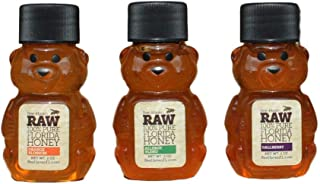 Bee-Haven Honey Farm Raw 100% Pure Florida Honey 2 Ounce Bear Sampler 3-Pack