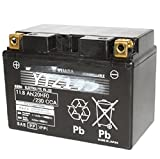 Yuasa Batterie 12V 11,8Ah YTZ14S prete a l'emploi Gel