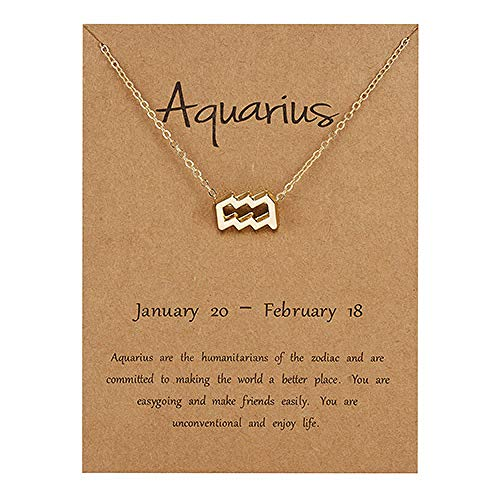 WFQGZ Necklace Crystal Star Zodiac 12 Constellation Necklace Lady Elegant Silver Gold Collar Necklace Lady Jia Birthday Gift 1G