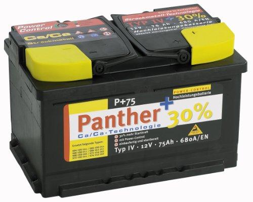 P 30{56447f6a48218d4abd71e23910455e072df54ca128294c31d01d9d45b0b1e9ef} P-55-480 Autobatterie