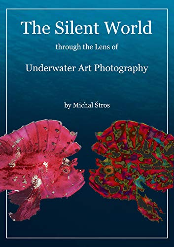 The Silent World through the Lens of Underwater Art Photography: Underwater Art Photography (English Edition)