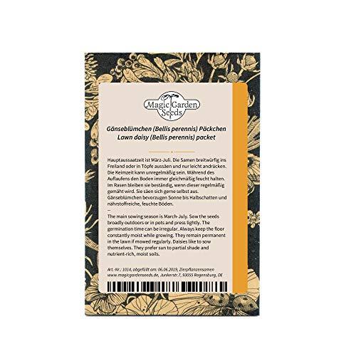 Gänseblümchen (Bellis perennis) Maßliebchen Tausendschön Margritli 1000 Samen
