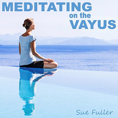 meditating on the vayus audiobook sue fuller audible in