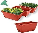 GHJA Paquete de 4 maceteros con Caja de Ventana, maceteros rectangulares de plástico con bandejas, contenedor de Cultivo de Plantas para macetas con 15 Etiquetas de Plantas para alféizar de Venta