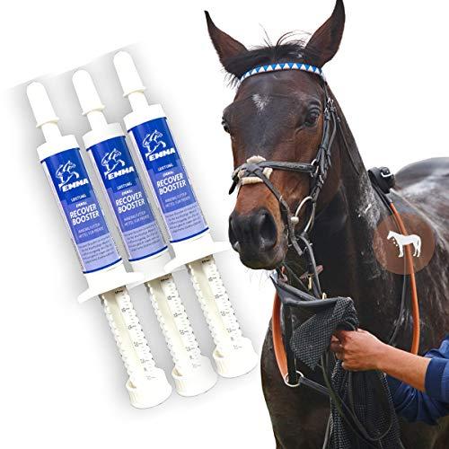 EMMA Elektrolyte Paste für Pferde I Booster I Mineralstoffe Natrium (Salze) Kalium Magnesium I Vitamin B-Komplex B1 B2 B6 B12 I bei Durchfall Schwitzen Kotwasser I Mineralsalze Regeneration Pferd 3St