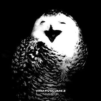 what volume 2 (the bonus tracks)