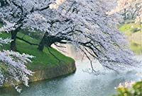 Amxxy 7x5ftビニール桜の背景写真の背景咲く花春の風景クリアリバーウェディング屋外ホリデーパーティーの背景子供大人の肖像画フォトスタジオ