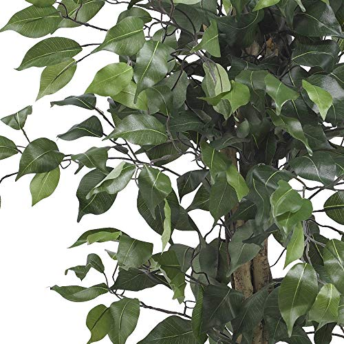 Product Image 3: Nearly Natural 3′ Ficus Silk Artificial Trees, 36in, Green