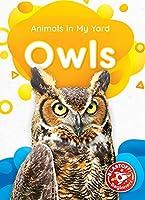 Owls (Animals in My Yard)