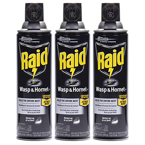 Raid Wasp & Hornet Killer Spray (14 Ounce (Pack of 3)