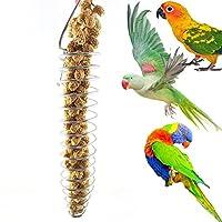Men club 面白い鳥フィーダーポータブルステンレススチールスパイラルフィーダー鳥オウムペットフードフルーツホルダー玩具ペット用品実用的で便利な便利で実用的