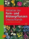 Bildatlas der Farn- und Blütenpflanzen Deutschlands: Alle 4200 Pflanzen in Text und Bild