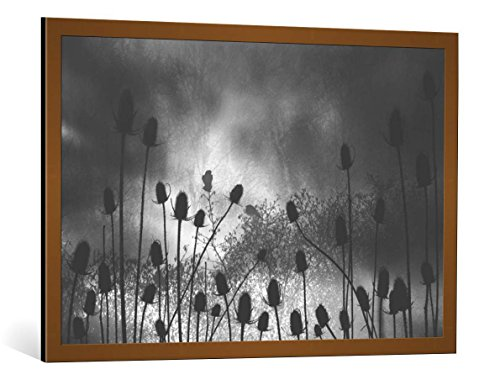 kunst für alle Bild mit Bilder-Rahmen: Beth Lutz Thistle Finch - dekorativer Kunstdruck, hochwertig gerahmt, 100x65 cm, Kupfer gebürstet
