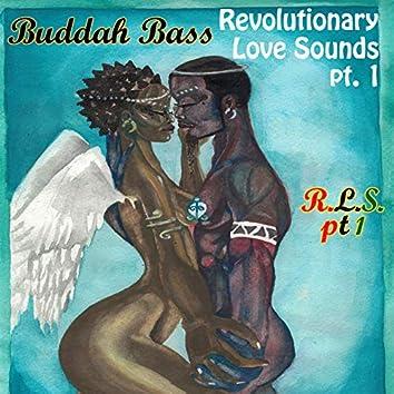 Revolutionary Love Sounds, Vol. 1