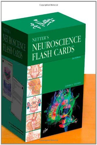 Netters Neuroscience Flash Cards 2e Netter Basic Science 2nd Second Edition By Felten Md Phd David L Published By Saunders 2010